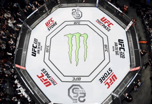 R.I.P. UFC Men's Flyweight divisie (Maart 2012-December 2018)