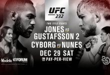 Uitslagen : UFC 232 : Jones vs. Gustafsson 2