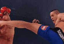 Costello van Steenis vecht tijdens Bellator 200 tegen Kevin Fryer
