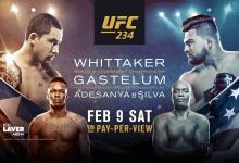 Uitslagen : UFC 234 : Adesanya vs. Silva