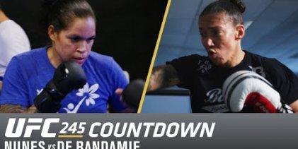 UFC 245 Countdown