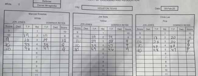 Meningen verdeeld over uitslag Jones vs. Reyes