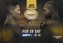 Uitslagen : UFC on ESPN+ 27 Norfolk : Benavidez vs. Figueiredo