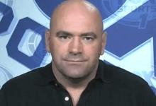 """""""Talpa moet de UFC blijven uitzenden"""" petitie gestart door MMA liefhebber"""